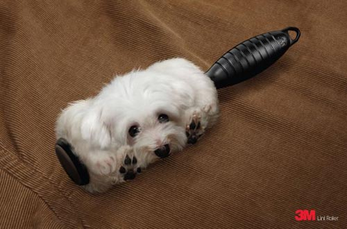 Rolled Dog Hair Lint Roller Advert