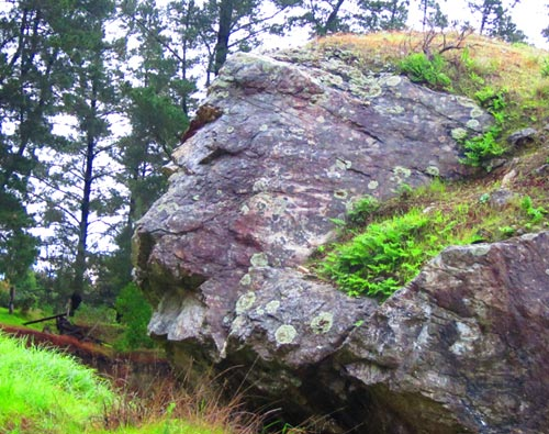 Lion Face Shaped Rock