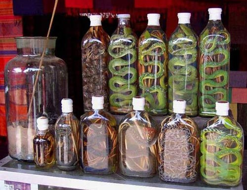 Snake Wine