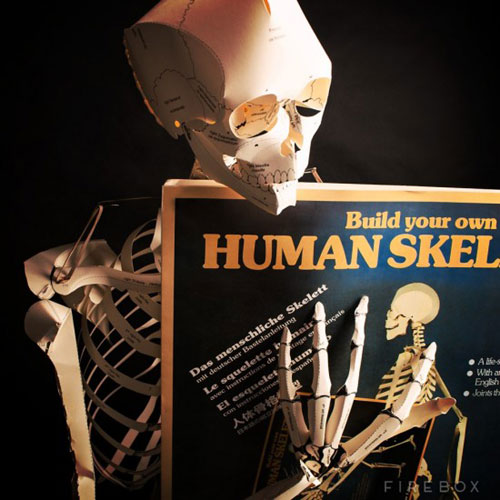 Do It Yourself Life Sized Paper Skeleton Project