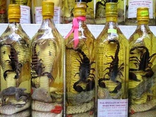 Vietnamese Snake Wine