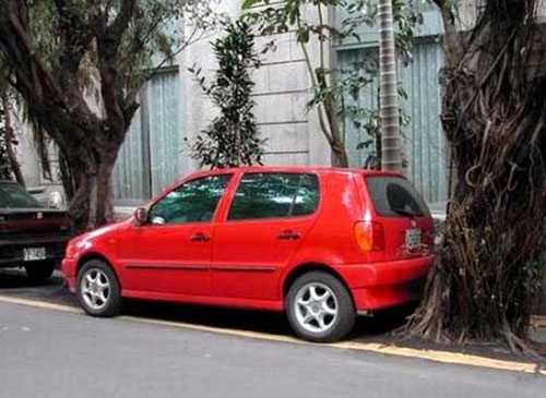 Volkswagen Golf Parked Between Trees