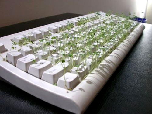 Chia Keyboard