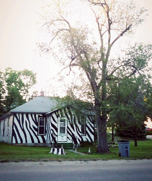 Zebra Stripes Painted House