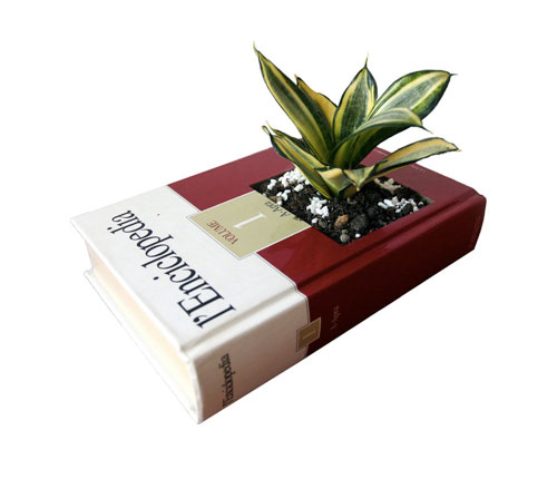 Recycled Encyclopedia Potted Plant