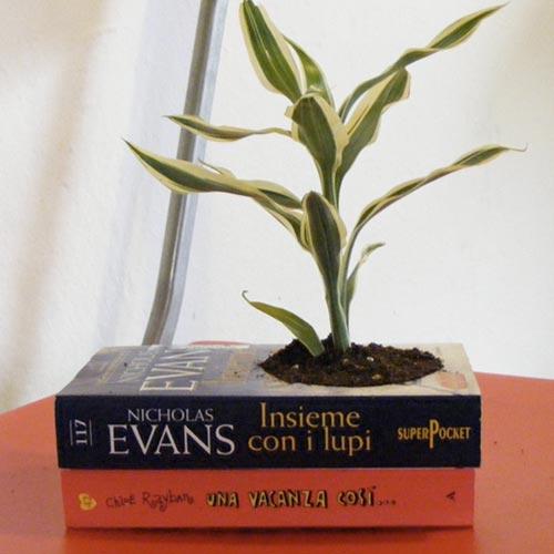 Paperback Planter
