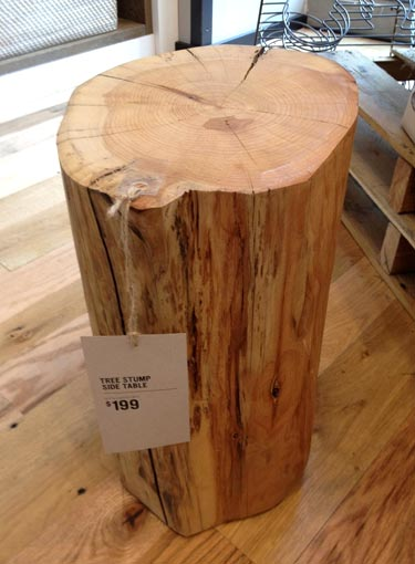 Tree Stump Side Table Funny Bizarre Amazing Pictures