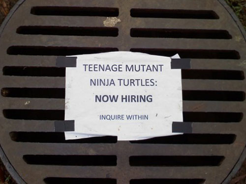 Now Hiring Teenage Mutant Ninja Turtles