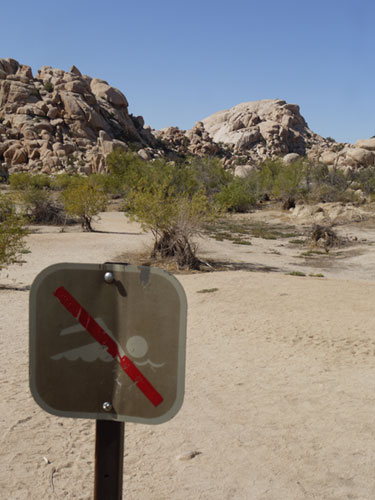 No Swimming Sign at Joshua Tree Park